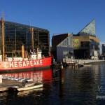 Baltimore Harbor in front of the Aquarium.