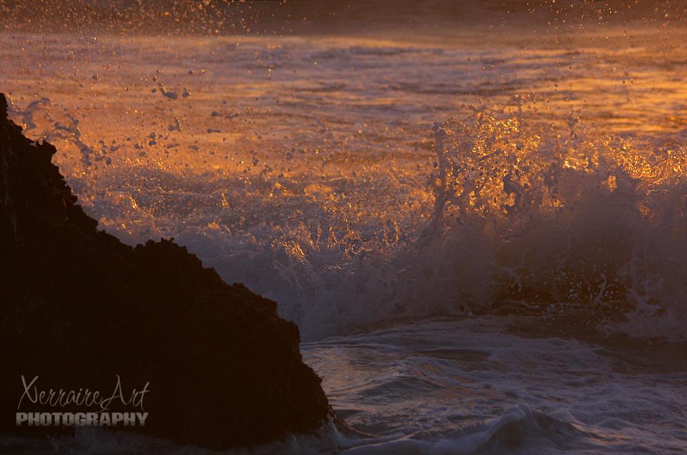 sunlit splash