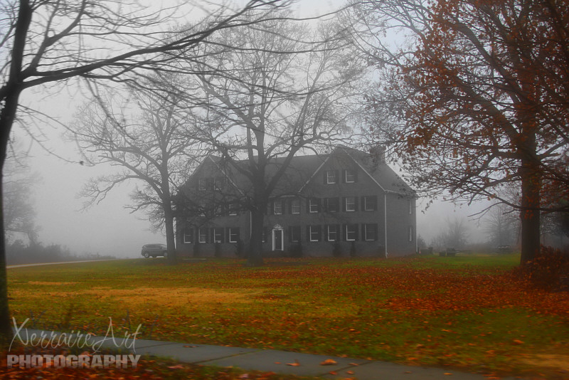 house, fog, leaves